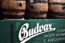Budweis 2018 :: Budweis 2018 54