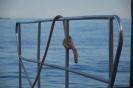 Gardasee 2014 116